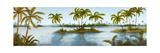 Cool Tropics II Premium Giclee Print by Michael Marcon
