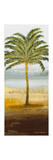 Beach Palm II Premium Giclee Print by Michael Marcon