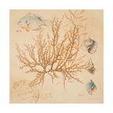 Coral Medley I Giclee Print by Lanie Loreth
