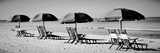 Beach Reunion Fotografisk tryk af Gail Peck