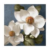 Magnolias on Blue II Kunst von Lanie Loreth