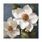Magnolias on Blue II Prints by Lanie Loreth