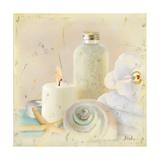 Silver Bath I Premium Giclee Print by Patricia Quintero-Pinto