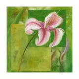 Cool Garden II Giclee Print by Patricia Quintero-Pinto