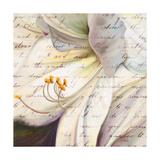 Lily Script I Premium Giclee Print by Patricia Quintero-Pinto