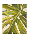 Tropical Leaf I Giclee Print by Patricia Quintero-Pinto