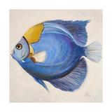 Little Fish III Premium Giclee Print by Patricia Quintero-Pinto