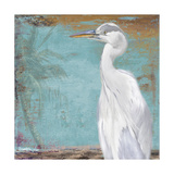 Tropic Heron II Premium Giclee Print by Patricia Quintero-Pinto