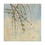 Kirschblüte II Giclée-Premiumdruck von Patricia Quintero-Pinto