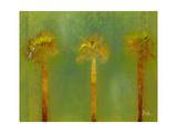 Three Palms II Premium Giclee Print by Patricia Quintero-Pinto
