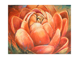 Red Lotus II Premium Giclee Print by Patricia Quintero-Pinto