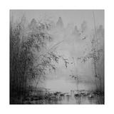 Bamboo River I Premium Giclee Print