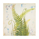 Nice Ferns I Premium Giclee Print by Patricia Quintero-Pinto