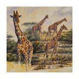 Safari III Premium Giclee Print by Peter Blackwell