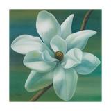 Star Magnolia Giclee Print by Vivien Rhyan