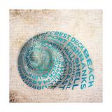 Shell Type II Giclee Print