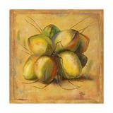 Cocos Locos I Premium Giclee Print by Patricia Quintero-Pinto