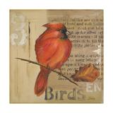 Red Love Birds II Reproduction giclée Premium par Patricia Quintero-Pinto