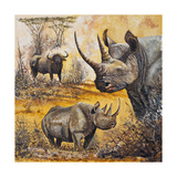 Safari I Premium Giclee Print by Peter Blackwell