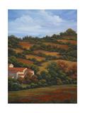 Italian Countryside II Premium Giclee Print by Vivien Rhyan