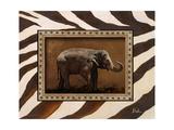 New Zebra Inspiration I Giclee Print by Patricia Pinto
