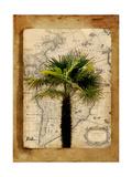 America II Giclee Print by Patricia Quintero-Pinto