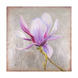 Magnolia on Silver Leaf II Prints by Patricia Quintero-Pinto