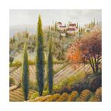 Tuscany Vineyard II Premium Giclee Print by Michael Marcon