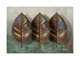 Three Amigos I Premium Giclee Print by Patricia Quintero-Pinto