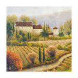 Michael Marcon - Tuscany Vineyard I Speciální digitálně vytištěná reprodukce