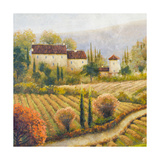Tuscany Vineyard I Premium Giclee Print by Michael Marcon
