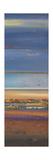 Blue Planet II Premium Giclee Print by Patricia Quintero-Pinto