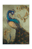 Peacock on Sage II Giclee Print by Tiffany Hakimipour