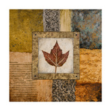 Fallen Leaf I (Red) Premium Giclee Print by Michael Marcon