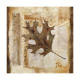 Fall I Premium Giclee Print by Patricia Quintero-Pinto