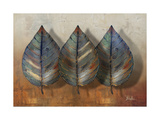 Three Amigos II Premium Giclee Print by Patricia Quintero-Pinto