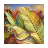 Through the Leaves Square I Premium Giclee Print by Patricia Quintero-Pinto