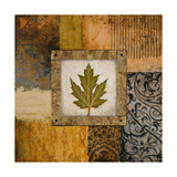 Fallen Leaf II (Green) Premium Giclee Print by Michael Marcon