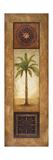 Sago Palm Impressão giclée premium por Michael Marcon