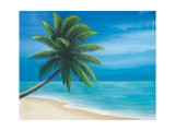 Palm Beach I Giclee Print by Vivien Rhyan