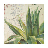 Aloe I Premium Giclee Print by Patricia Quintero-Pinto