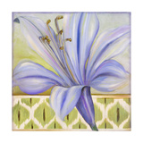 African Lily I Prints by Patricia Quintero-Pinto