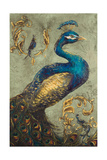 Peacock on Sage I Premium Giclée-tryk af Tiffany Hakimipour