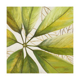 Fresh Leaves II Giclée-Druck von Patricia Pinto