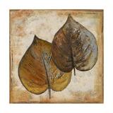 Natural Leaves I Reproduction giclée Premium par Patricia Quintero-Pinto