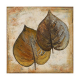 Natural Leaves I Premium Giclee Print by Patricia Quintero-Pinto