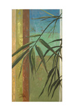 Bamboo and Stripes II Premium Giclee Print by Patricia Quintero-Pinto