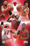 Chicago Bulls - Team 14 Poster