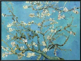 Almond Branches in Bloom, San Remy, c.1890 Posters by Vincent van Gogh