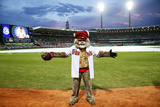 Mar 22, 2014, Los Angeles Dodgers vs Arizona Diamondbacks - Baxter the Bobcat Photographic Print by Matt King